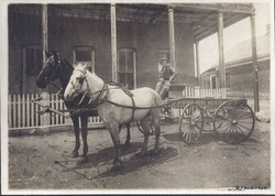 Rudolph Zadow, taken June 8, 1907---on Bateman Street in Eureka. He is driving the butcher wagon for People's Market.